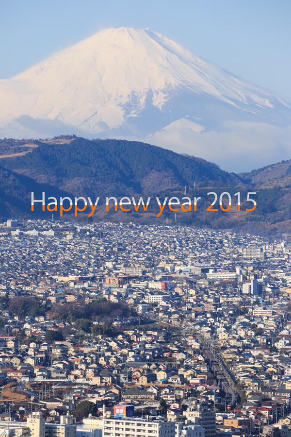 Happy-new-year-2015-LSE_v.jpg